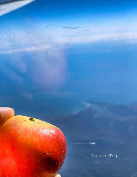 機内食のミニりんご